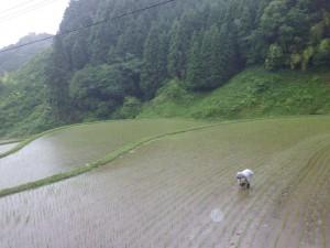 fukayama2